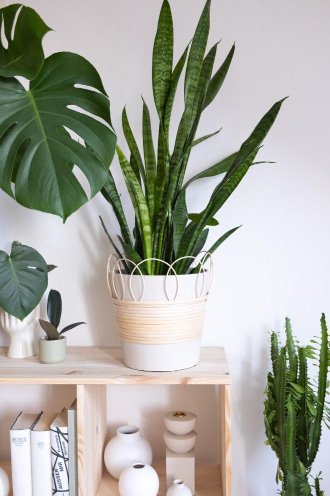 schereleimpapier kreative Tutorials für DIY Geschenke, DIY Möbel und DIY Deko zum Basteln DIY Rattan Blumentopf