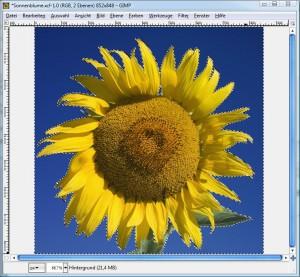 GIMP: Zauberstab-Werkzeug, Markierung erweitern