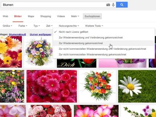google-bildsuche-nutzungslizenz