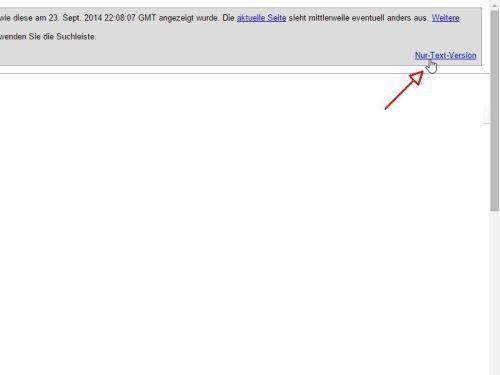google-cache-nur-text