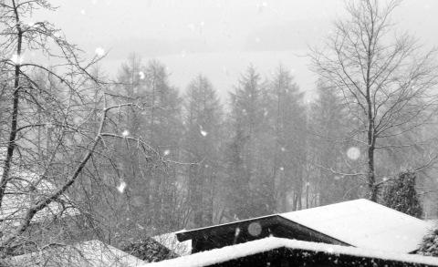 guten morgen schnee in winterberg zoom. Black Bedroom Furniture Sets. Home Design Ideas
