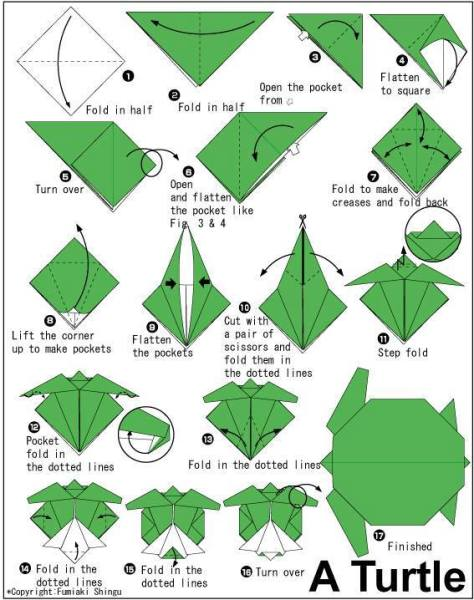 Origami Schildkröte Anleitung