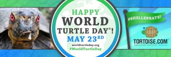 Heute Ist Der Beste Tag Der Welt