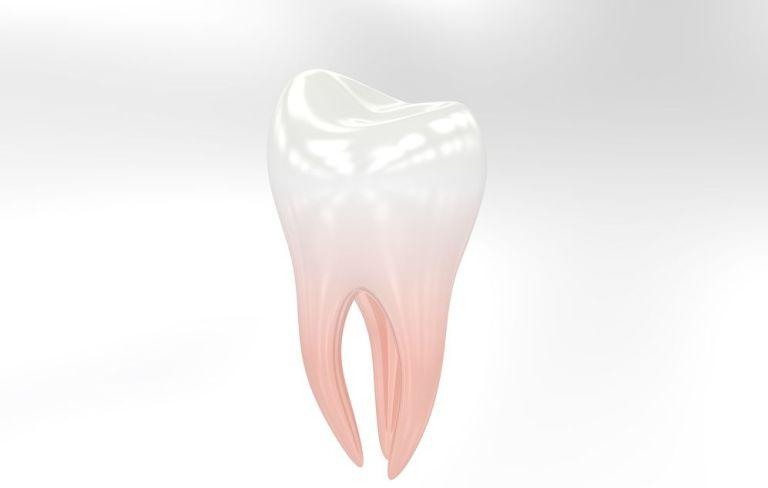 """""""An jedem Zahn hängt ein ganzer Mensch"""""""