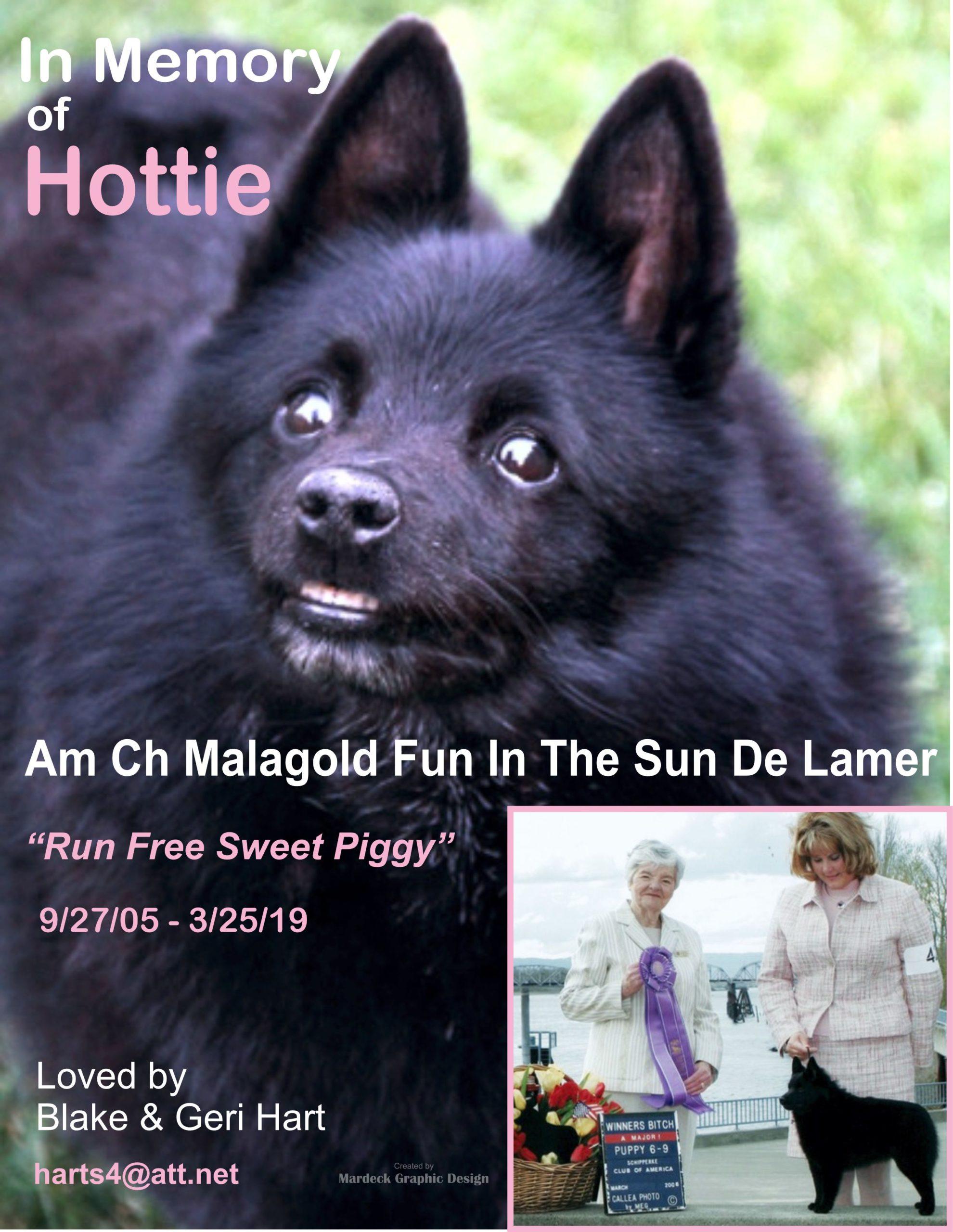 2 – FINAL Hottie Memorial Ad – Hart Drft One B