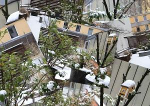 Schneewirrwarr auf meiner Koelner Sommerterrasse