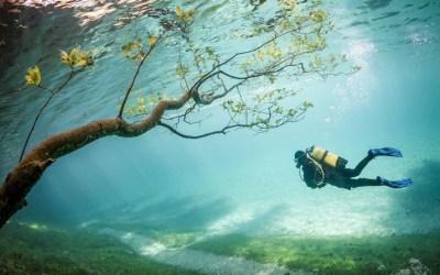GRÜNER SEE | In de lente een bijzonder parkmeer