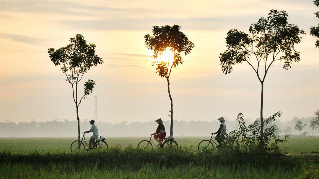 Inspiratiedag op de fiets