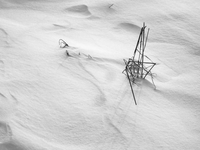 Winteraufnahmen-1