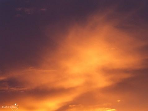 orange_sky