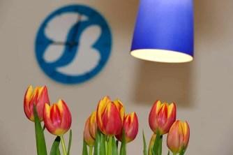 Stil mit Logo und Blumen