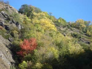 Herbststimmung im Bietschiloch