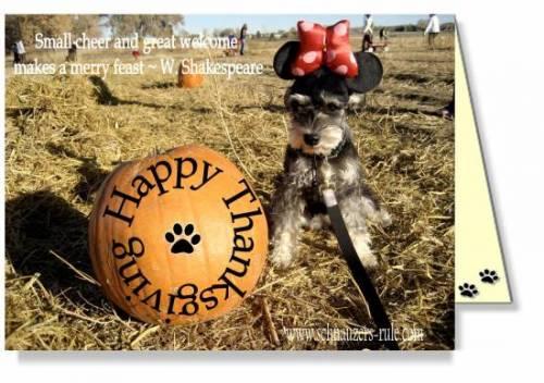 Schnauzer Dog Holiday ECards
