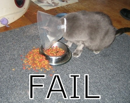 fail11_wwwschneeseicherch