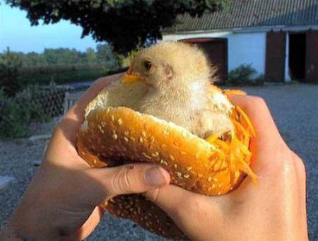 pouletburger_wwwschneeseicherch