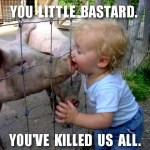 Schweinegrippe: Wir haben den Schuldigen gefunden!
