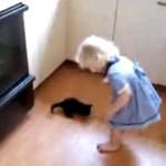 Süsses Kätzchen
