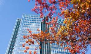 Learn about the four ways to save energy in your building.
