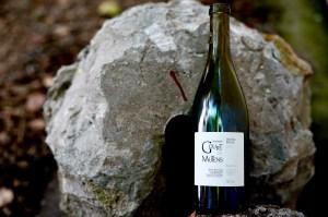 Wein Podcast Gourt de Mautens