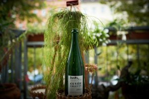 Champagne Cuvee Colette Raue Macionga