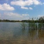 Blick auf Kulkwitzer See