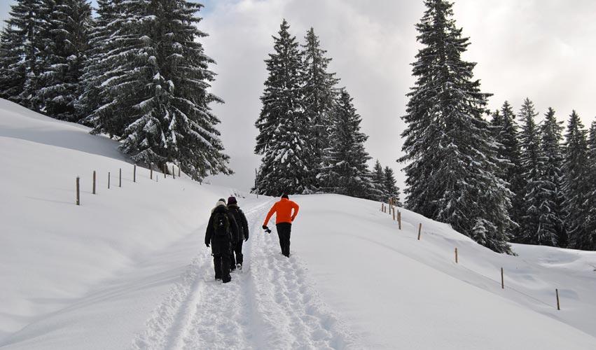 Winterwanderung mit Marc Traubel. Jede Woche werden diverse Aktivitäten zur freien Auswahl angeboten.