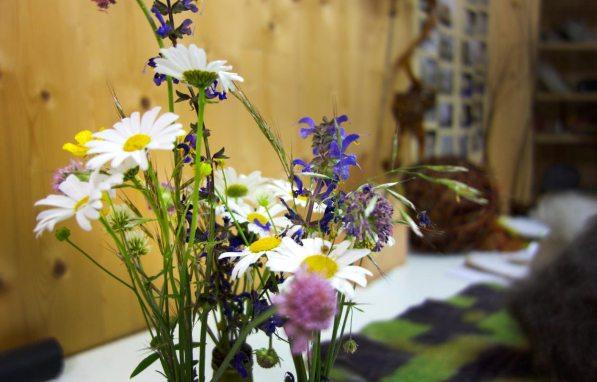 Wiesenblumen auf dem Amorthof