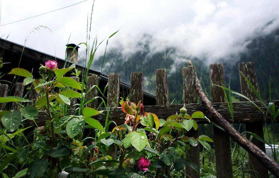 Regentag Ultental