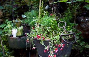 Blumen Onkel Taa Bad Egart