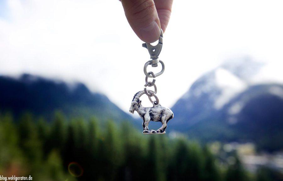 Schlüsselanhänger Steinbock von wohlgeraten.de