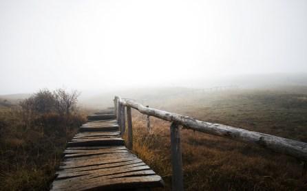 Mystische Stimmung auf dem Wanderweg