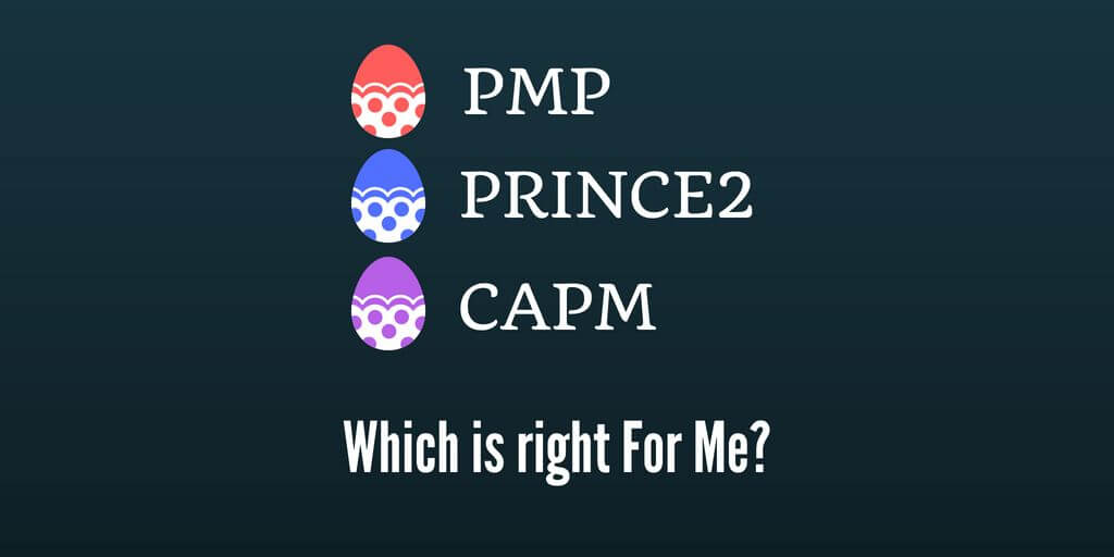 Capm Vs Pmp Vs Prince2 Which Certification Best Suits Me