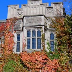 Scholarships Grants with a November Deadline