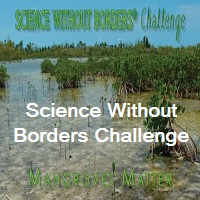 Science Without Borders Challenge International Student Art Contest 2021