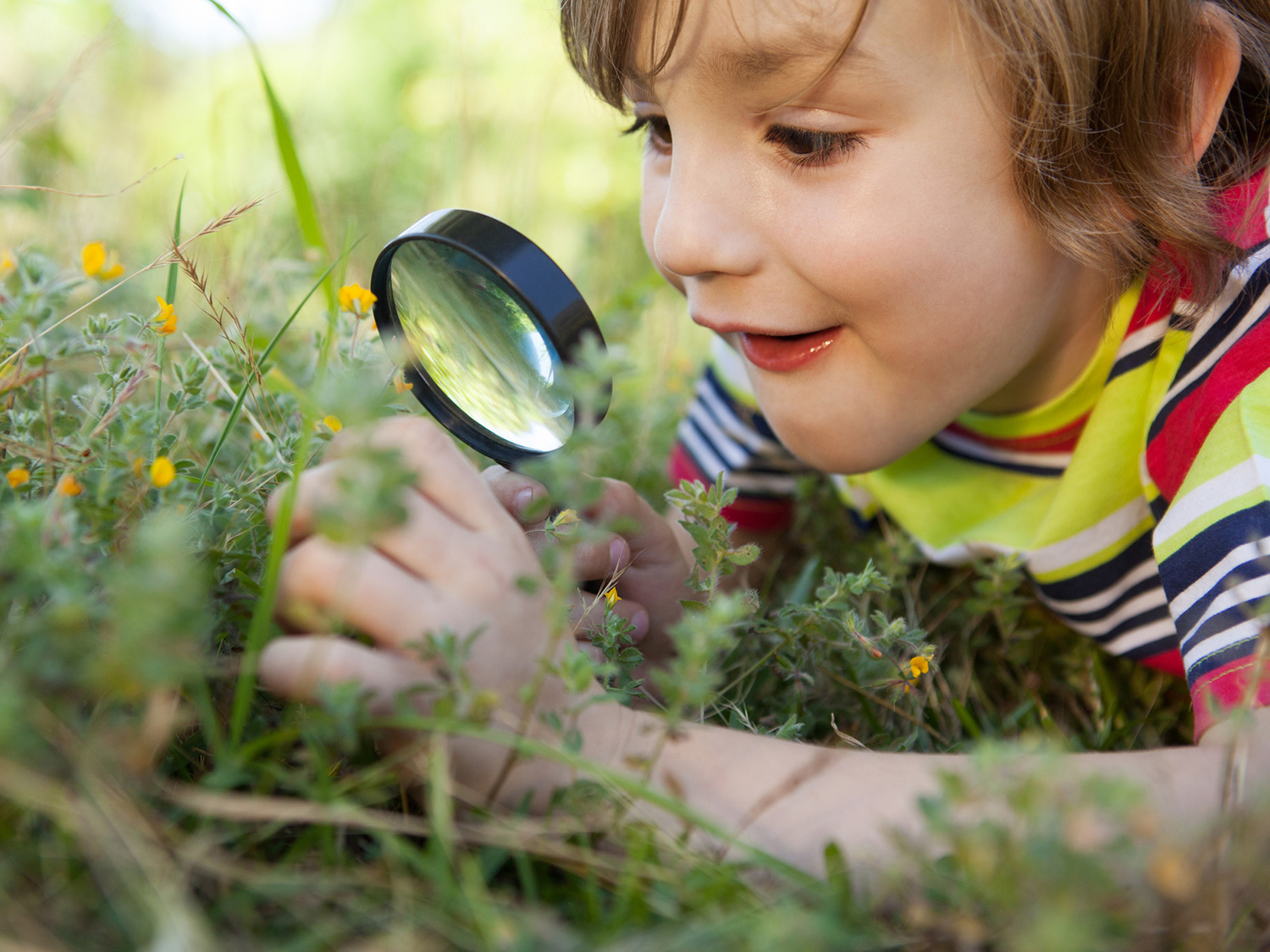 Activities For Strengthening Observation Skills