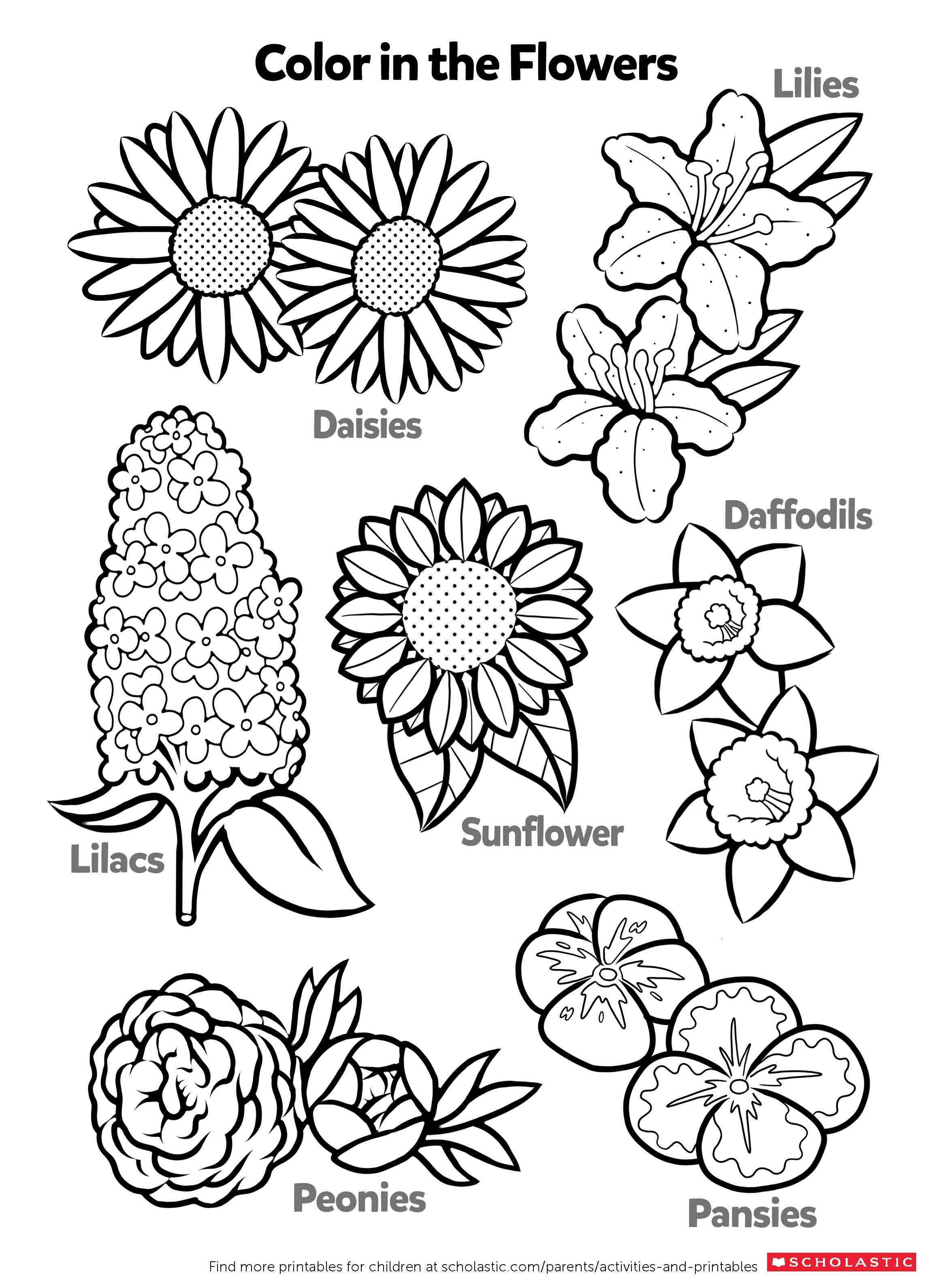Best 21 Coloring Worksheets For Kids