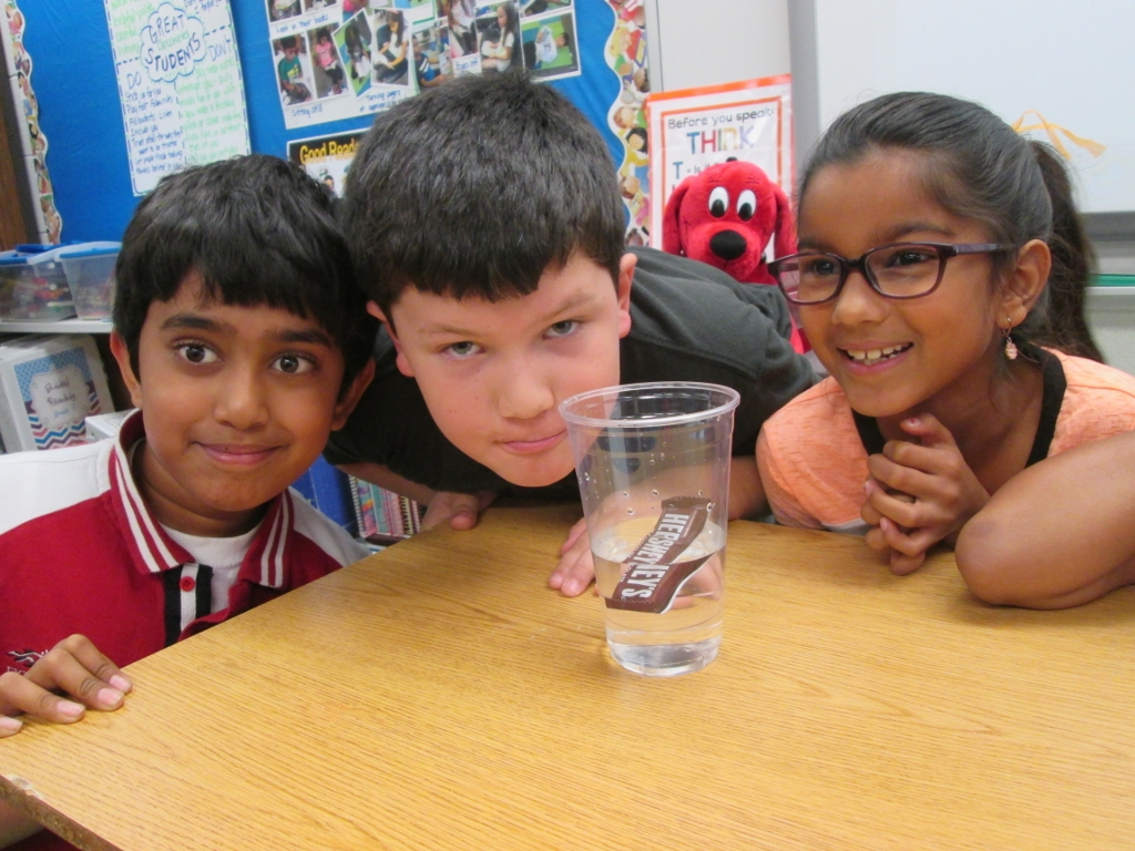 Stem Challenge Sink Or Float Can S