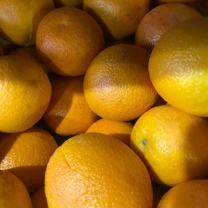 medium Oranges