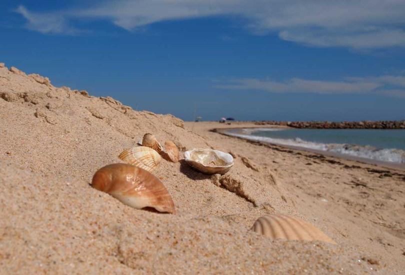 Strand Praia do Barril - Algarve Portugal