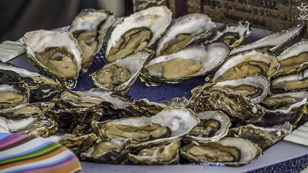 Frische Austern aus Namibia