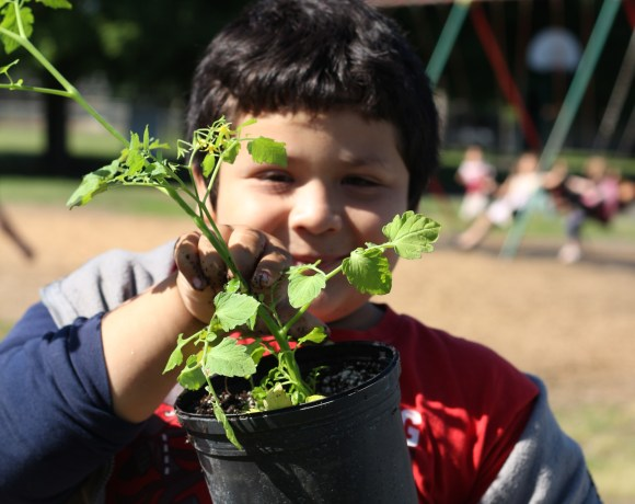 Equity: Garden Based Learning for Everyone