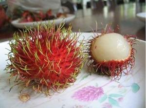 costa rica fruit mamon chino