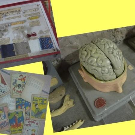 Raccolta di oggetti didattici, IC Visconti, Roma [Foto: Archivio GoTellGo, CC BY, NC, NC]