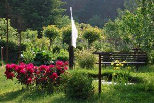 Mein prall-schöner Garten Ende Mai.