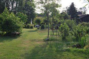 Das grüne Mittelstück des langen Gartens.