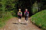Nordic Walking / Bewegungsgruppe @ Gemeindeamt Wiesfleck | Wiesfleck | Burgenland | Österreich