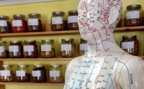 Männlicher Oberkörper mit Markierungen für Akupunktur, im Hintergrund homöopatische Kräuter