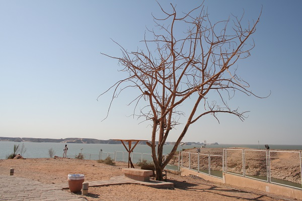 Ufer am Nasserstausee