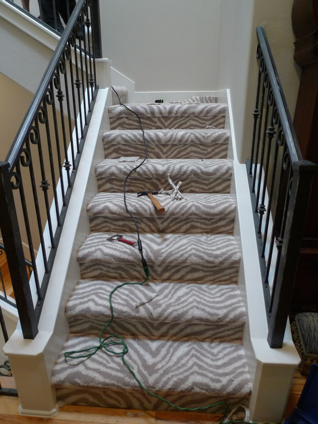 Animal print wall carpeting for Leopard print wall to wall carpet