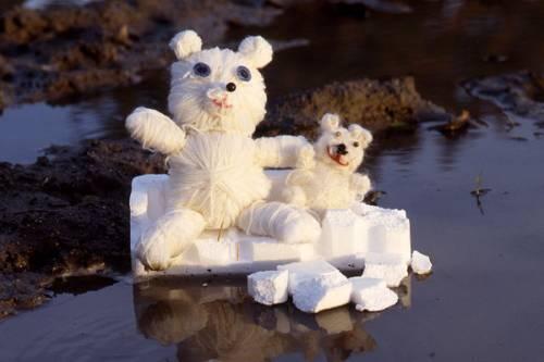 Basteln Mit Kindern Kostenlose Bastelvorlage Tiere